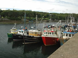 EU Fishing Dependency Project, case strudy Stornoway, UK (EC, 2010)