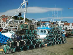 South East Inshore Fishery Group, Pittenweem, UK (Marine Scotland, 2009)