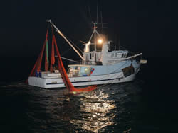 Spencer Gulf prawn fishery, MSC full assessment (SGWCPFA), 2010