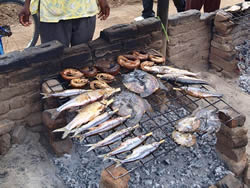 Fish quality improvement in Malawi (Commonwealth Secretariat, 2012)