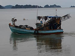 Blue Swimming Crab Fisheries Improvement Plan, Kien Giang, WWF, 2012, Lawnin Crawford
