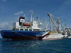 Pacific purse seiner to Carrier, FSM NPOA-IUU, FFA Devfish II, 2013, photo by Francisco Blaha