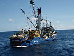 Korean purse seiner, Solomon Islands Offshore Fisheries Adviser, MFMR/MSSIF/NZAid
