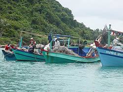 Sustainability in small scale fisheries (Lawnin Crawford), FAO, 2009
