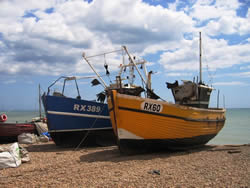 South East Fishing Industry Development Plan, Hastings, UK (SEEDA, 2007)