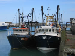 South East Fishing Industry Development Plan, Newhaven, UK (SEEDA, 2007)