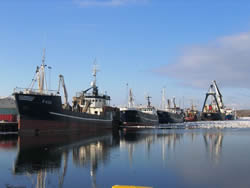 Danish fisheries assessments, Thyborøn, Denmark (MSC, 2010)