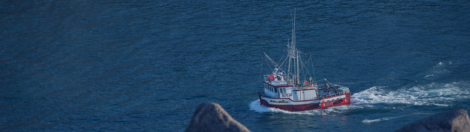 Fisheries Consultants - Fisheries governance fishery consultants